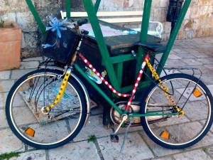 Shiva's bike